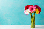 Colorful bunch of gerbera flowers in a glass vase. Blue background. Copy space.