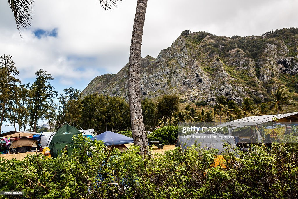 Colorful camping tents set up in the Palm trees and along the white