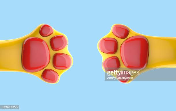 colorful cat's paws on blue background