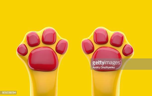 Colorful cat's paws