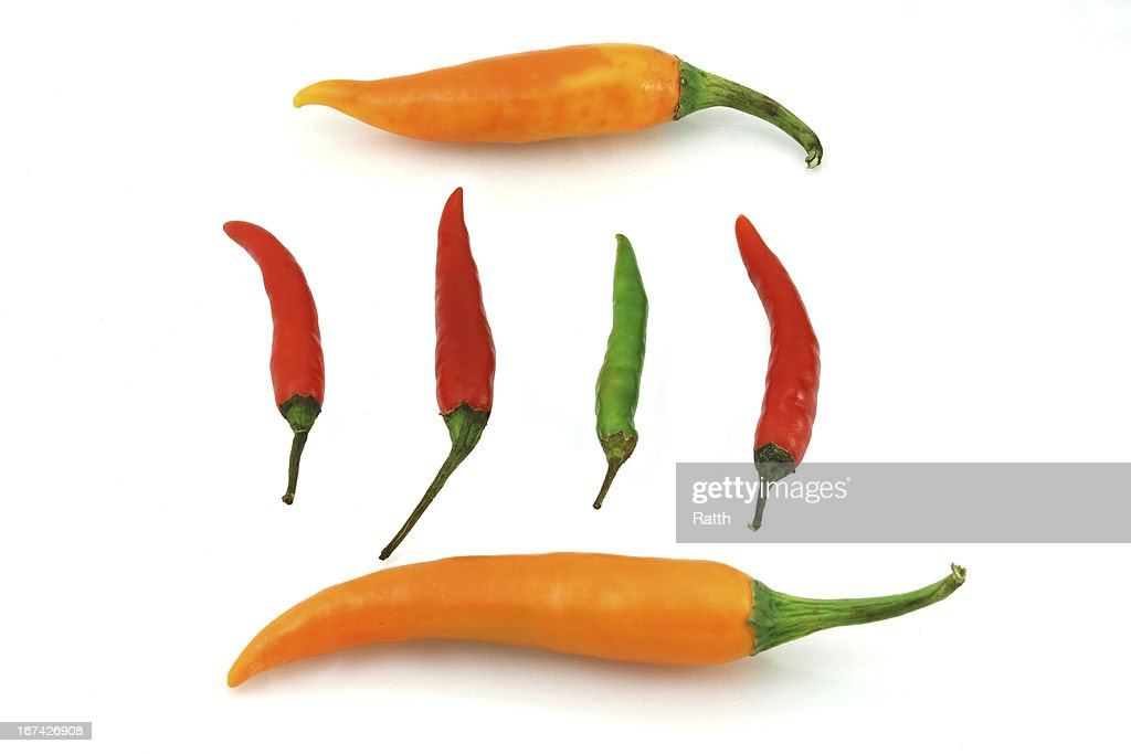 Colorful chili pepper : Stock Photo