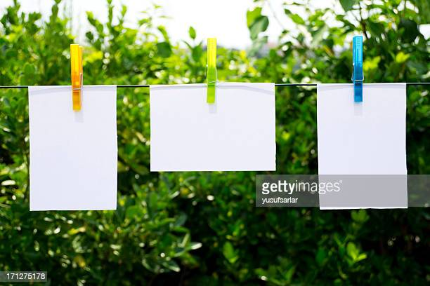 Colorful Clothespins and Notepads in Nature, Garden