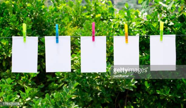 Colorful Clothespins and Notepads in Nature Garden
