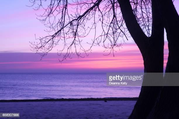 Colorful Dawn Sky Over Lake Michigan at Pratt Beach in Chicago, Illinois
