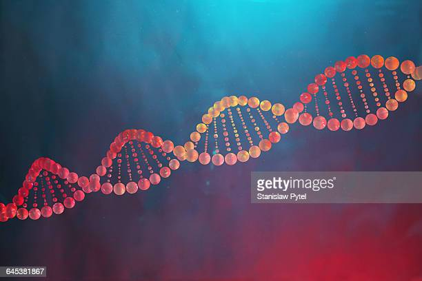 Colorful DNA helix
