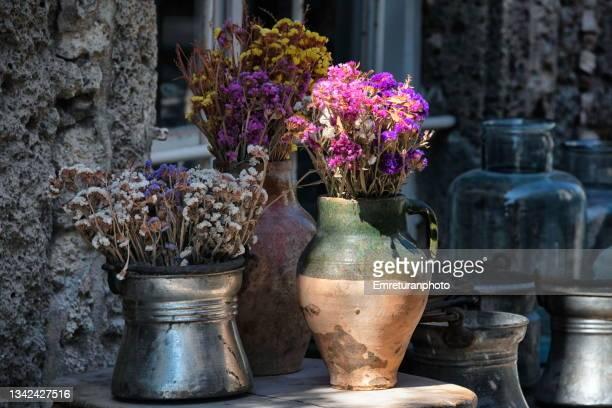 colorful dried flowers in vases - emreturanphoto fotografías e imágenes de stock