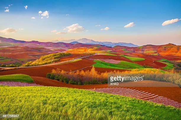Terra colorido