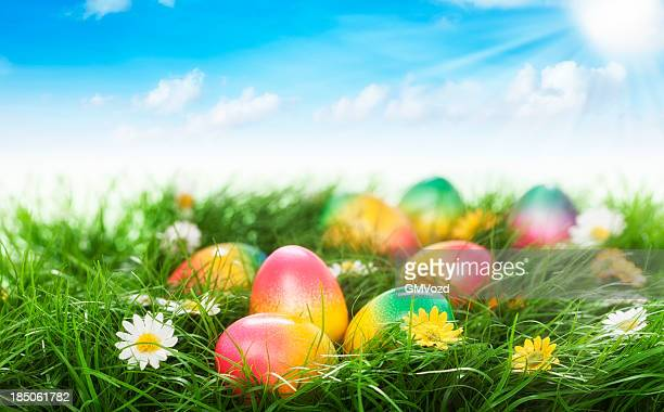 colorful easter eggs decorated on green grass - easter egg stock pictures, royalty-free photos & images