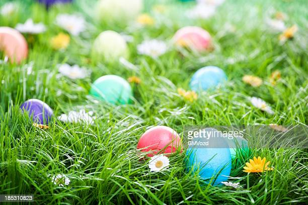 Colorful Easter Eggs Decorated on Green Grass