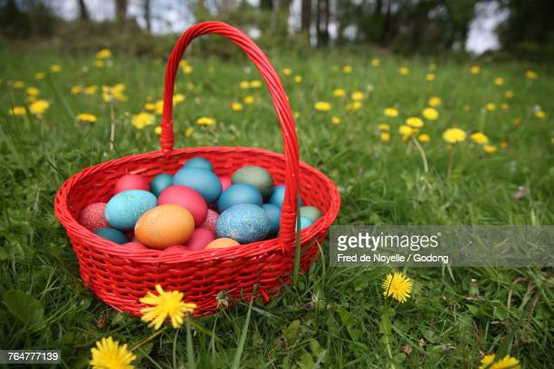 Colorful easter eggs in a basket. France.