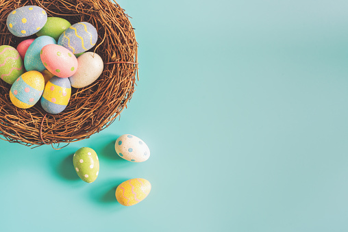 Colorful easter eggs in nest on pastel color background with space. 908008656