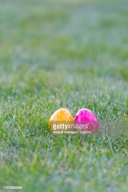 colorful easter eggs lying in the backyard grass. with copyspace - osterei stock-fotos und bilder