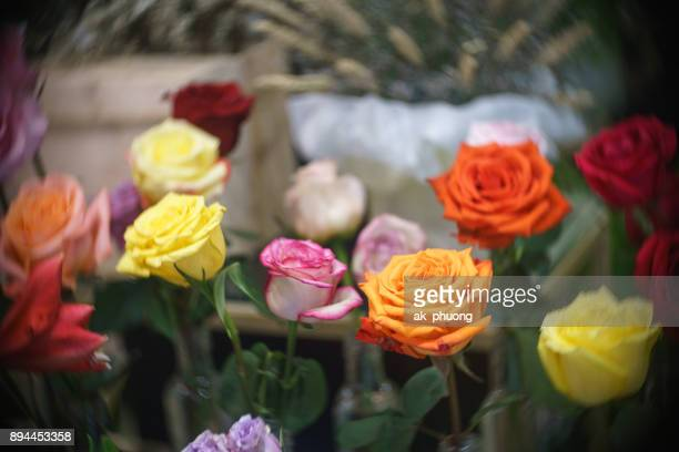 Colorful Ecuador rose flowers