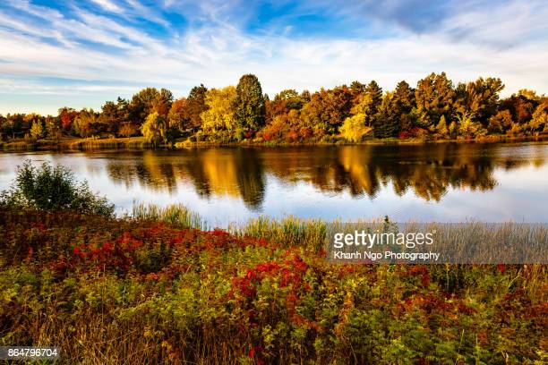 colorful fall in canada - moncton stock photos and pictures