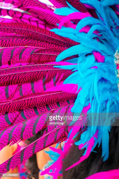colorful feather - samba stock pictures, royalty-free photos & images
