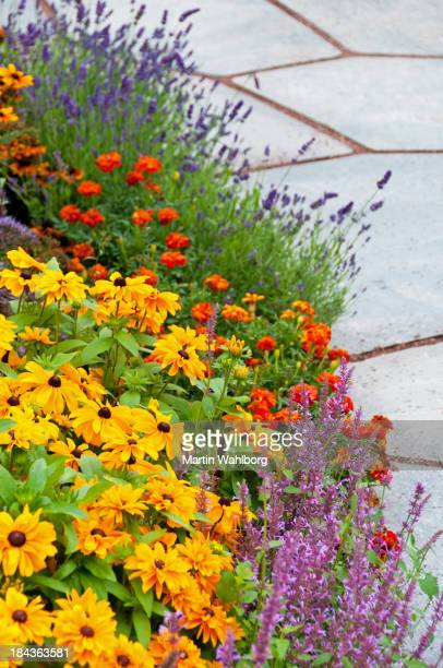 Colorful flower bed next to slate path