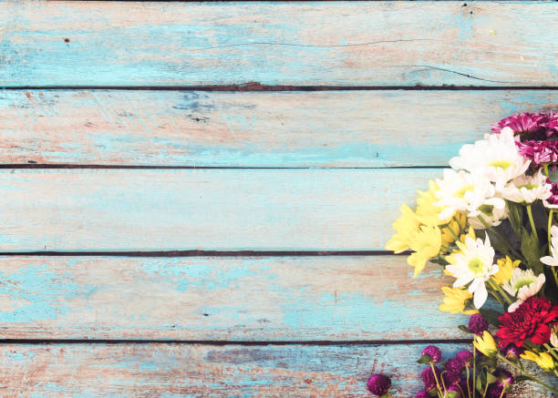 Colorful Flower With Vintage Background