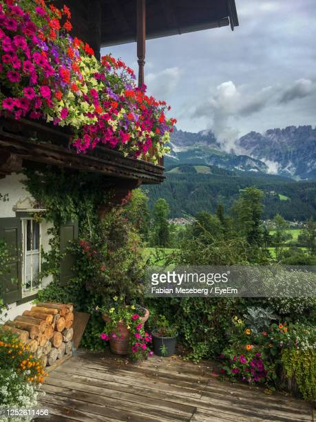 colorful flowers in full bloom at balcony of idyllic old farmhouse in the austrian alps in summer - 北チロル ストックフォトと画像