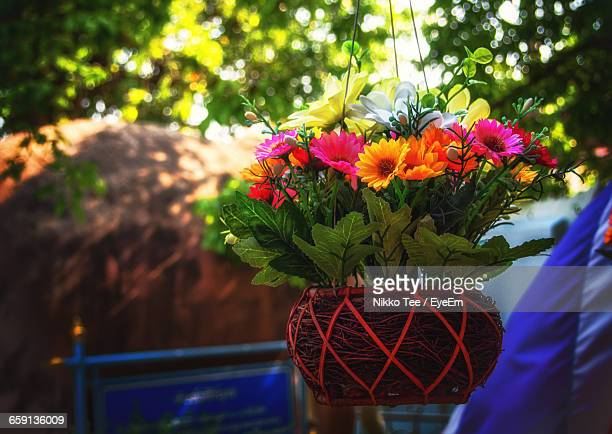 colorful flowers in hanging basket - hanging basket stock pictures, royalty-free photos & images