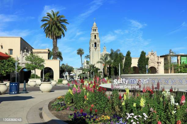 colorful flowers on the plaza de panama in balboa park - rainer grosskopf stock pictures, royalty-free photos & images