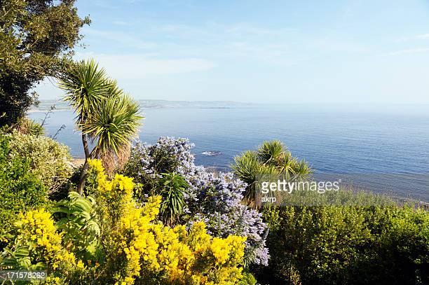 Colorful Garden above the Sea