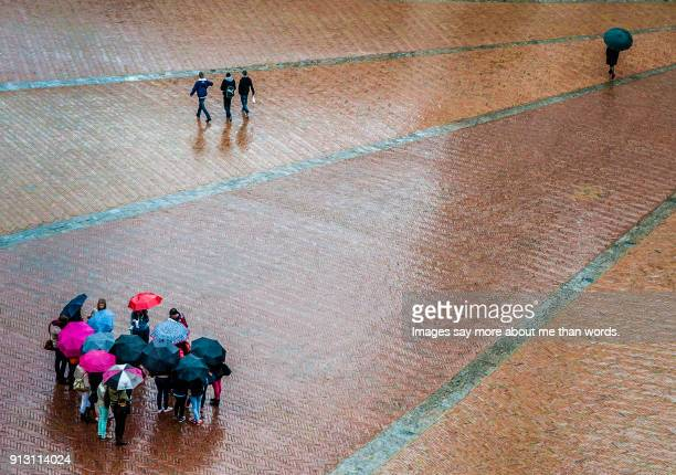 A colorful group of tourists pay attention to their guide under umbrellas in Siena's rain season.