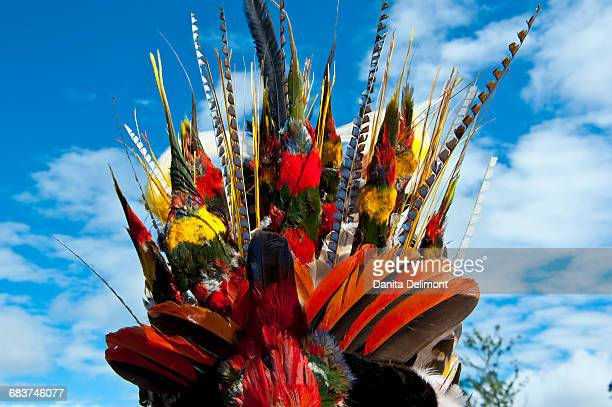 Colorful headwear in traditional Sing Sing ceremony, Mount Hagen, Highlands, Papua New Guinea