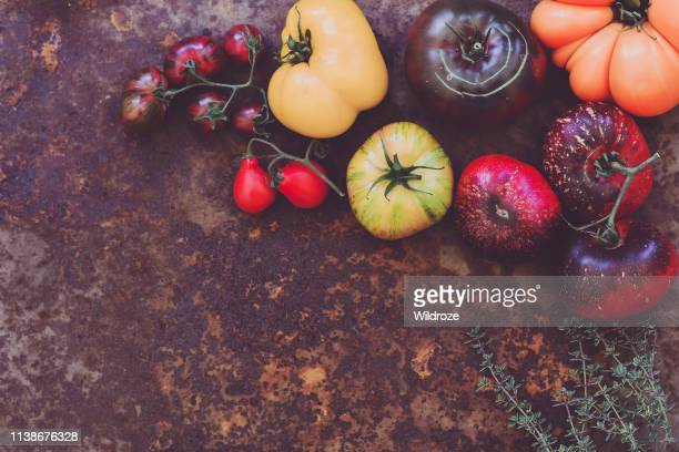 colorful heirloom tomatoes fresh from my organic country garden - imperfection stock pictures, royalty-free photos & images