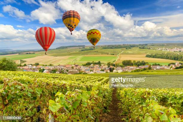 colorful hot air balloons flying over champagne vineyards at sunset montagne de reims - reims stock pictures, royalty-free photos & images