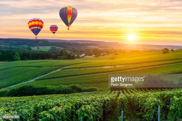 Colorful hot air balloons flying over champagne Vineyards