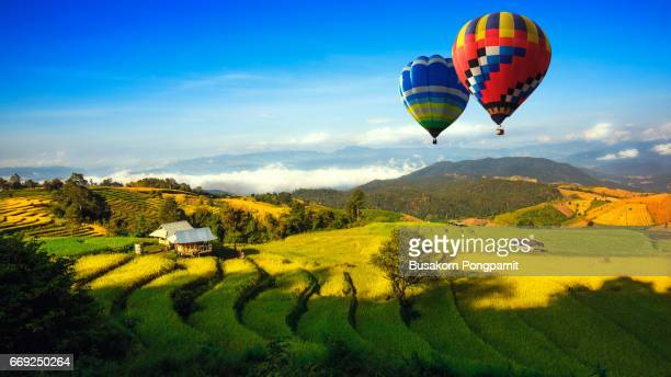 Colorful hot-air balloons flying over the doi Inthanon national park with sunrise and morning mist at Chiang mai, Thailand.