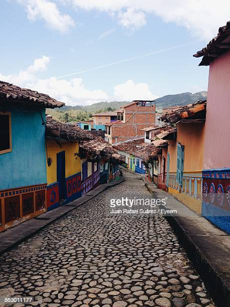 Colorful Houses Alongside Of Stone Pathway