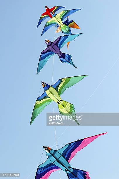 Colorful kites soaring in the sky