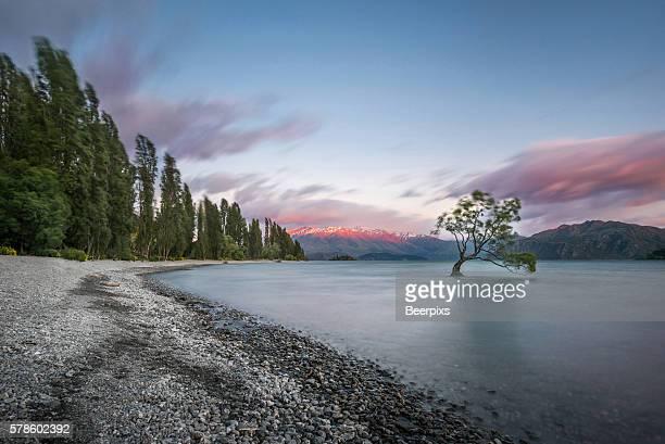 Colorful Lake Wanaka at sunset, New zealand.