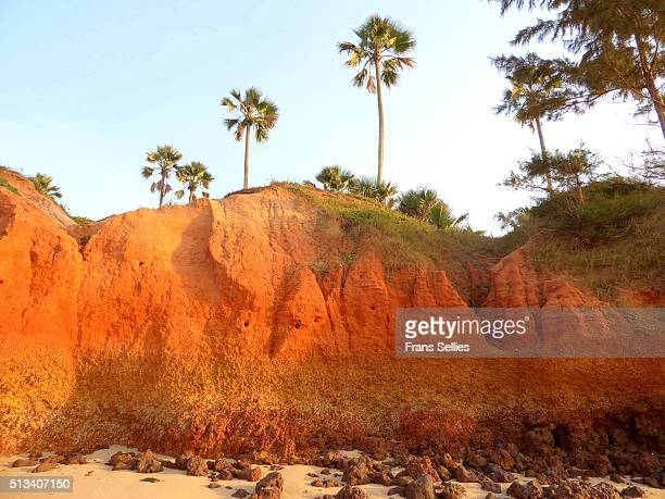 colorful landscape at the atlantic coast, gambia - gambia - fotografias e filmes do acervo