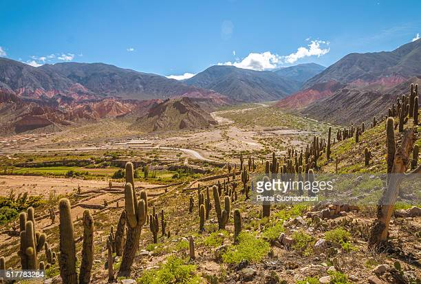 Colorful Mountain Formation of Tilcara, Argentina