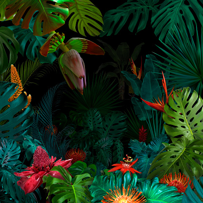 Colorful night jungle background 1050132996
