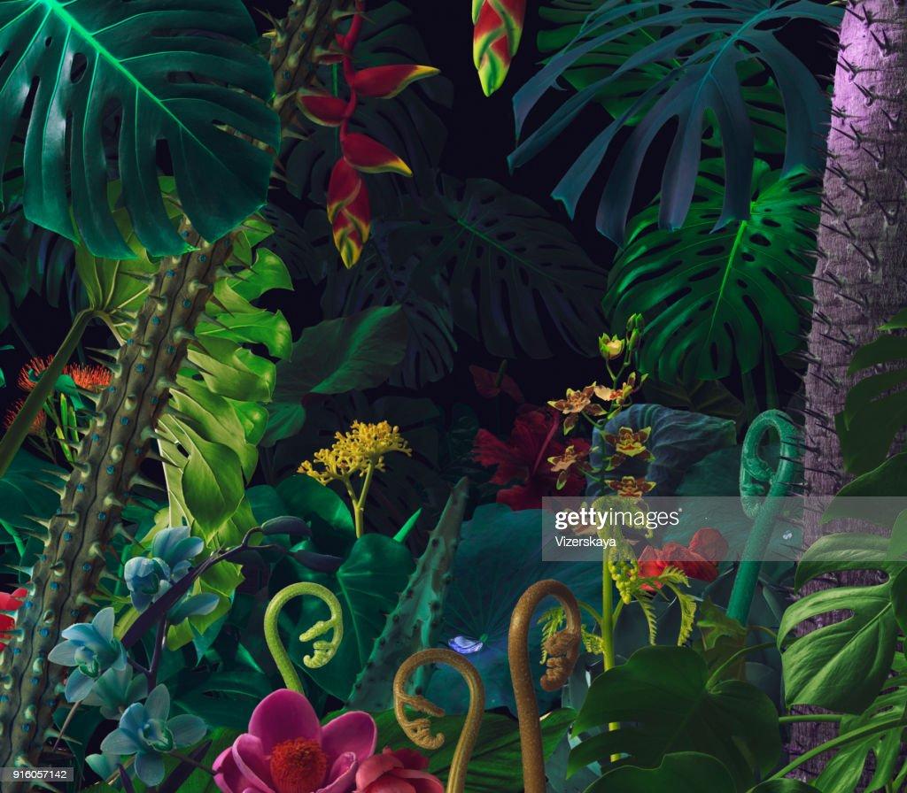 Colorful night jungle background : Stock Photo