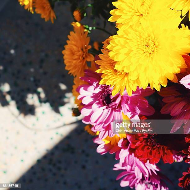Colorful Of Flowers Displayed For Sale At Shop