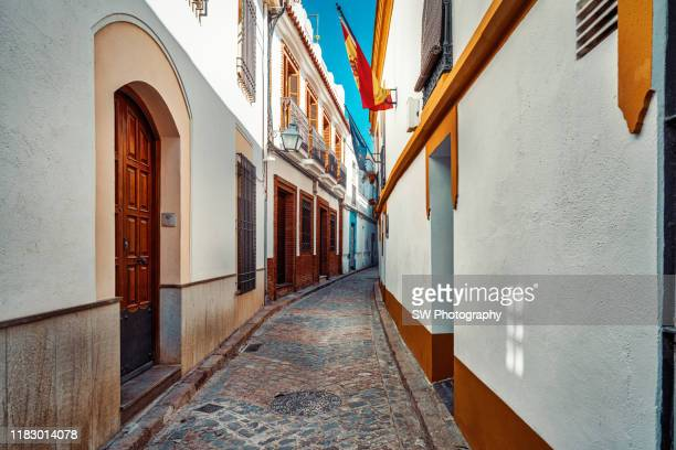 colorful old street in cordoba, spain - 中庭 ストックフォトと画像