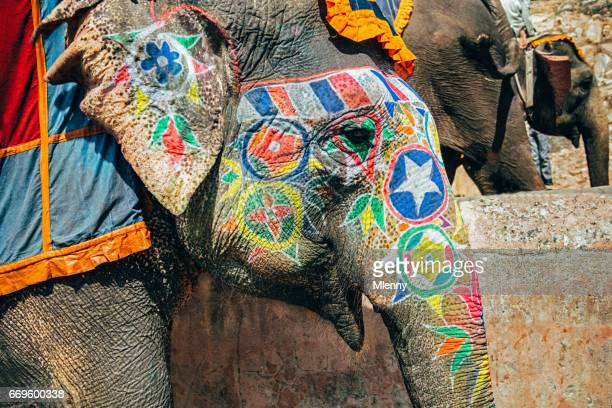 Colorful Painted Indian Elephant in India