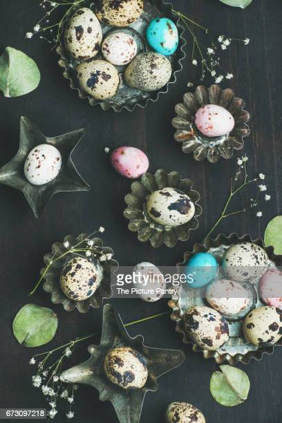 Colorful painted quail eggs in metal molds, dried wild flowers and leaves for Easter holiday