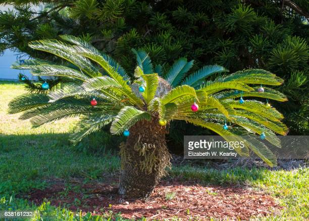 colorful palmetto decorated for christmas - palmetto florida stock pictures, royalty-free photos & images
