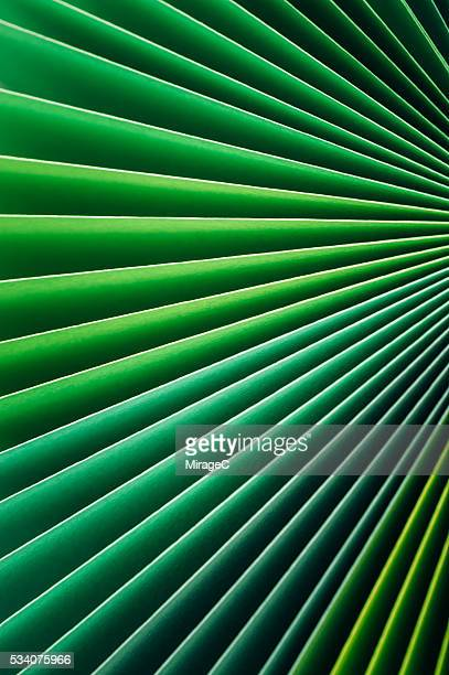 Colorful Paper Pages Stack Radial Gradient, Green