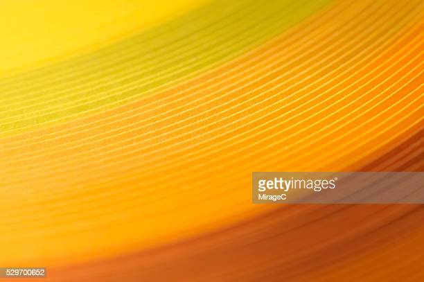 Colorful Paper Stripes, Yellow Orange Color