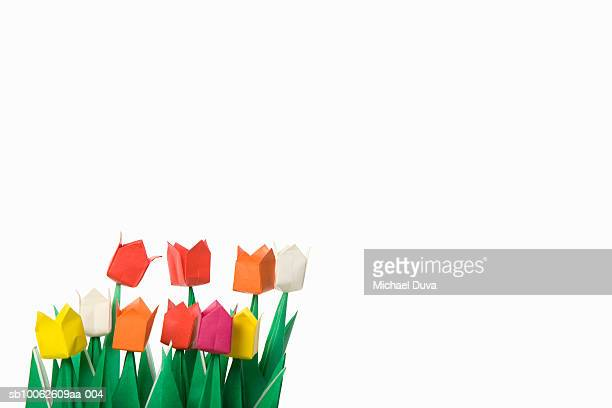 Colorful paper tulips against white background