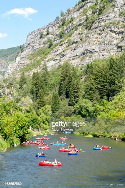colorful rafts floating down the provo river on a hot summer day - provo stock pictures, royalty-free photos & images