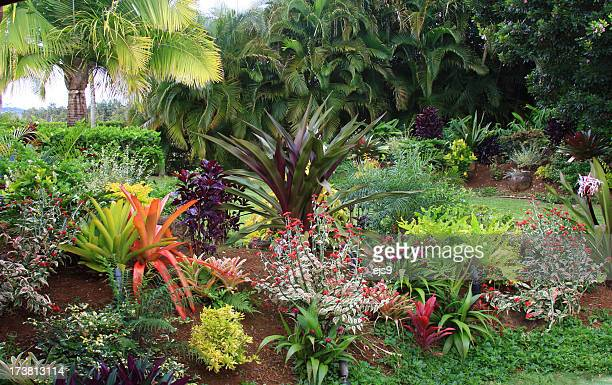 Colorful resort garden on  Hawaii