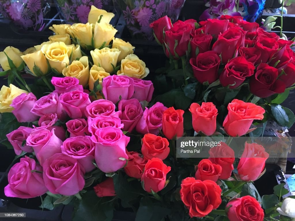 Colorful Roses Selling In New Year High-Res Stock Photo