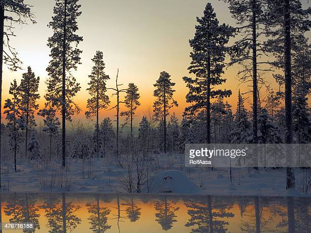 colorful scenario on the tourist mountain aavasaksa - winter solstice stock photos and pictures